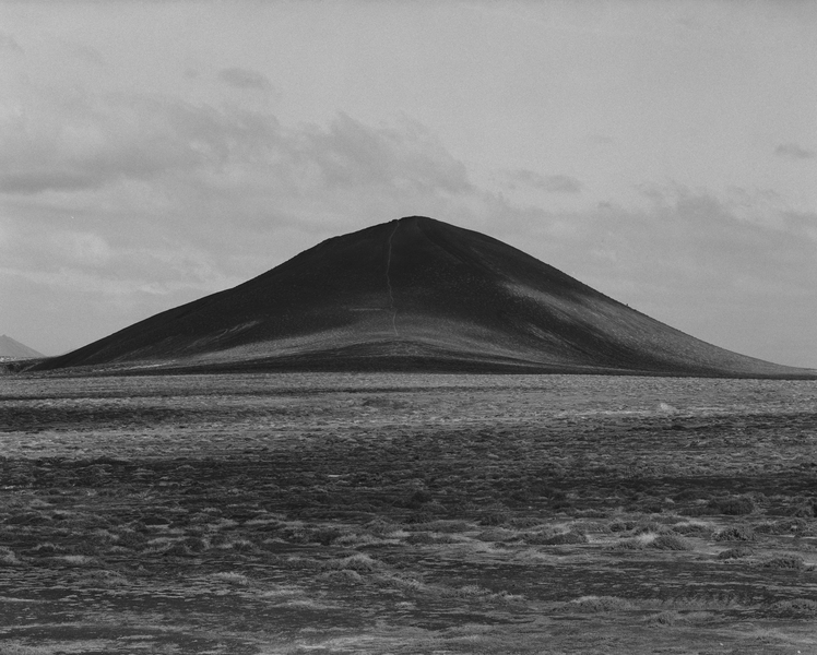 Awoiska van der Molen,  Sequester, 2014
