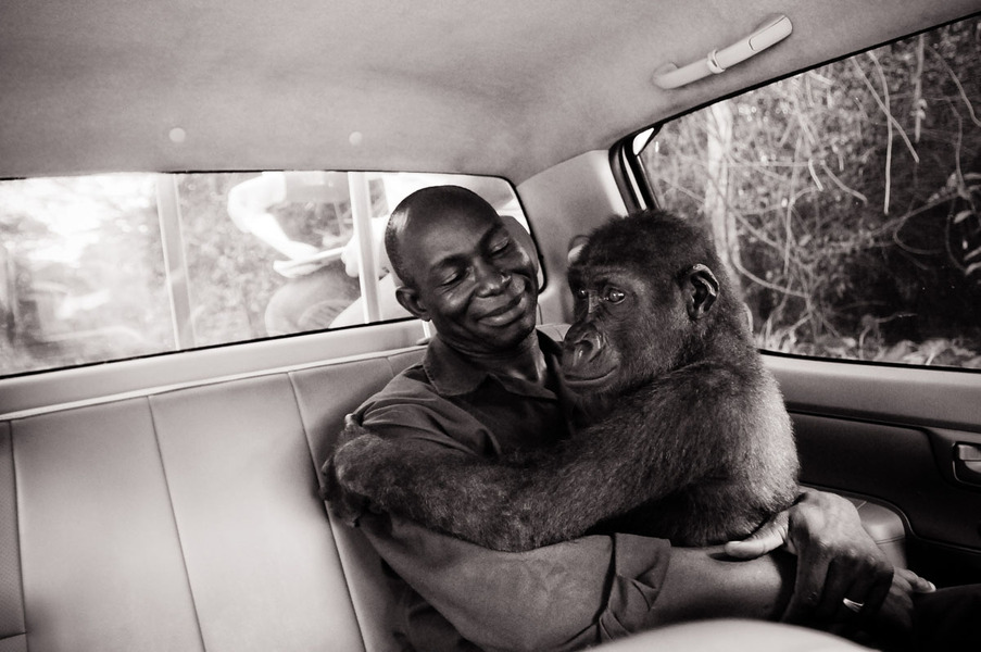 Pikin and Appolinaire - Jo-Anne McArthur - Canada