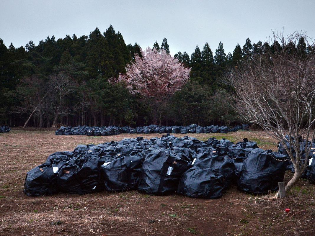 Yuki Iwanami - Home Lost - Fukushima Landscapes